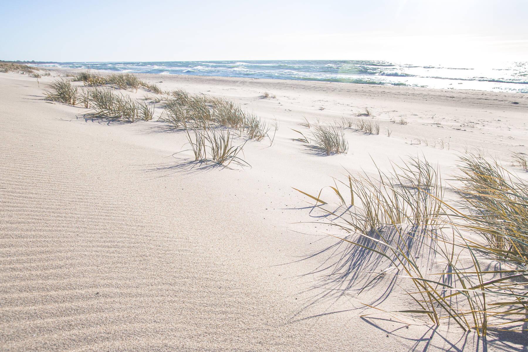 plaża w Sarbinowie