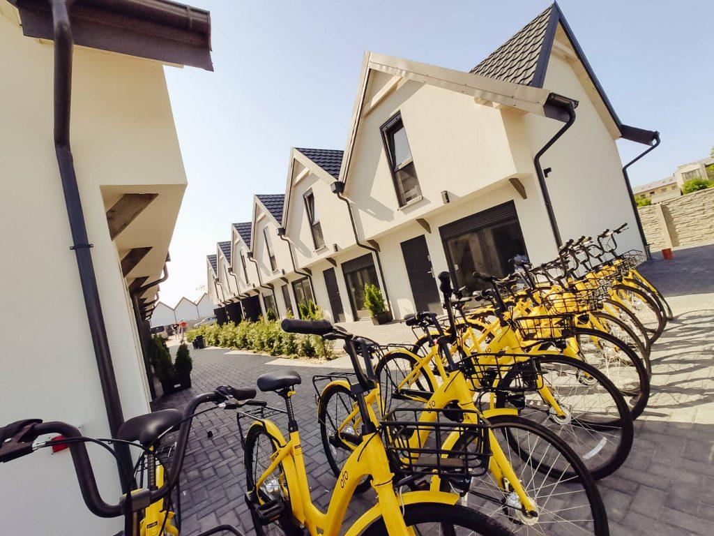 dalia żółte rowery